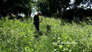 Cemetery Preussisch Holland