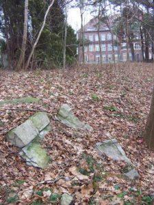 Frauenburg Friedhof Cemetery