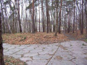 Cemetery Frauenburg